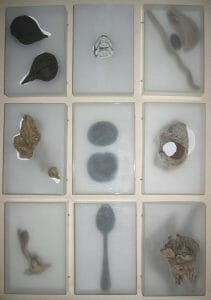 Nature of Plasticity - acrylic boxes and found objects